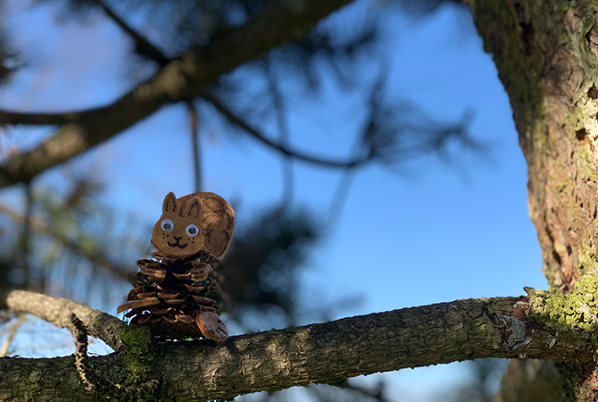 How to Make a Pine Cone Squirrel